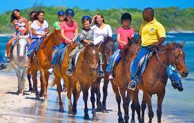 Horseback riding3